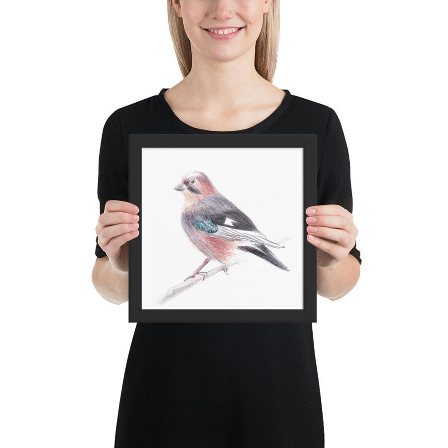 """Glezniņa """"Latvijas putni - Sīlis"""""""